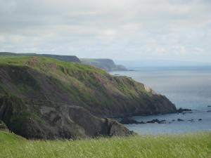 Heartland coastal scenery. Wild and wooly Devon.