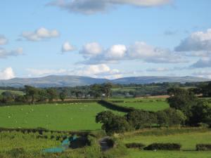 Dartmoor: adventure capital of Devon.
